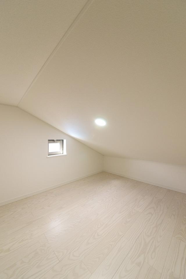 スーパーコンテナ(屋根裏収納)スペース。