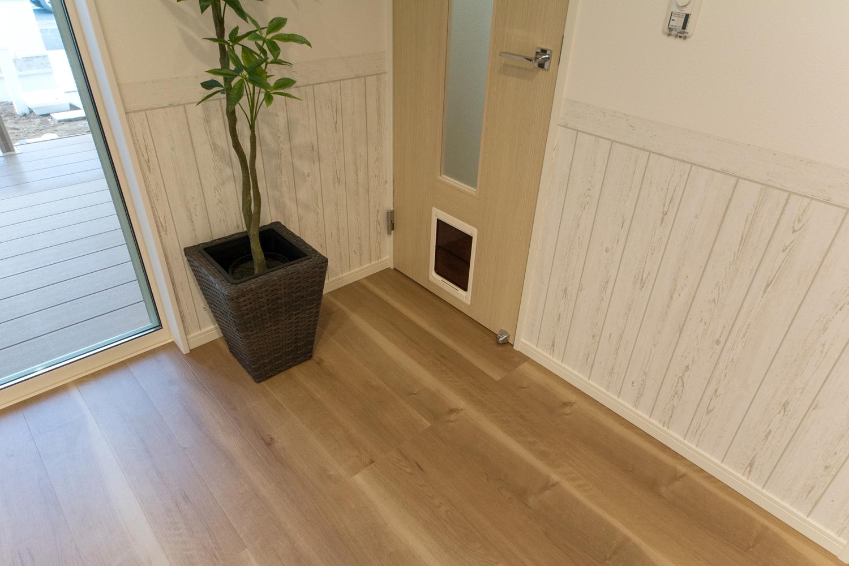 ペットが自由に出入りできる「ペットドア」。ペットのためにドアを開けたままにしなくてすみ、冷暖房光熱費も節約