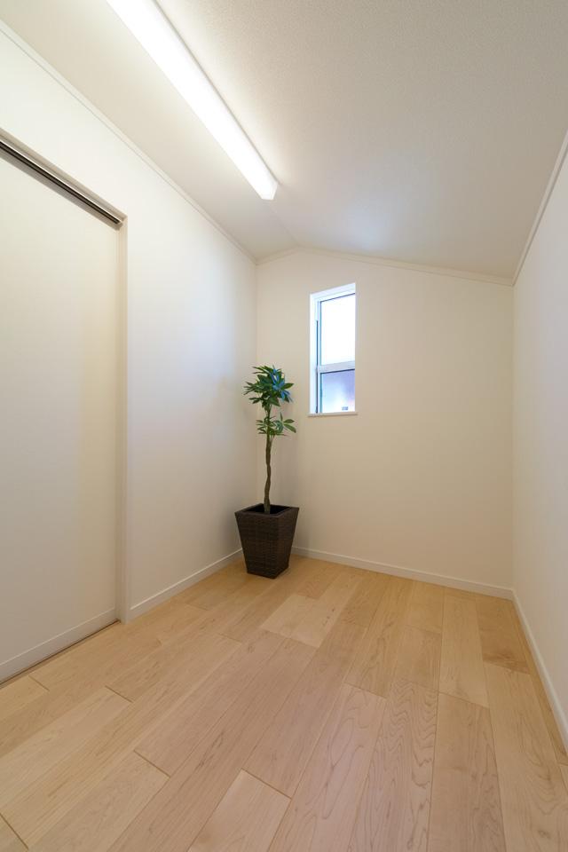 1F階段下の収納スペース。