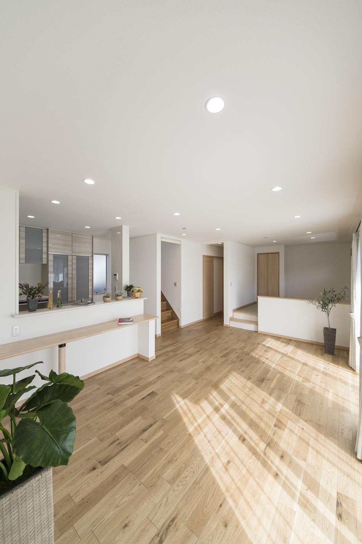 南側に大きめの窓を配置することで、自然の光を採り入れ、明るさを確保し、照明はダウンライトをメインに。