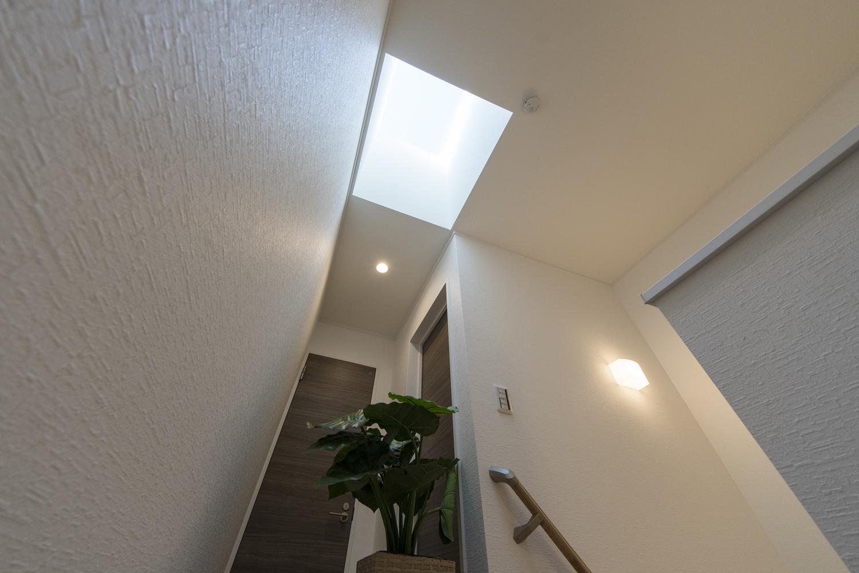 天井にトップライトを設えた明るく光のあふれる2階ホール。