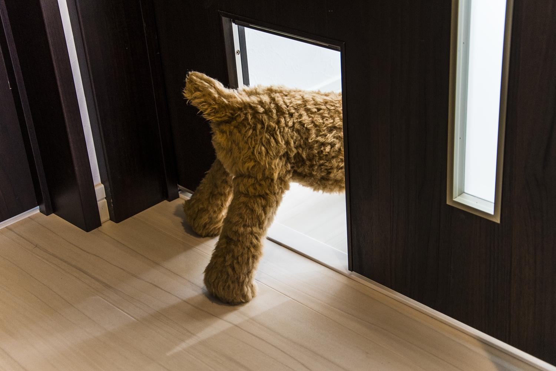 ペットが自由に出入りできる「ペット窓」。ペットのためにドアを開けたままにしなくてすみ、冷暖房光熱費も節約できます。